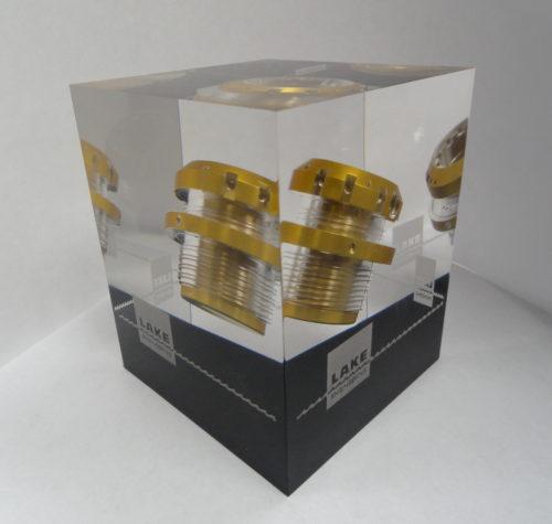 Custom Acrylic Embedments